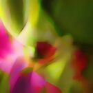 Wrapped in Spring's Warmth by Alissa Brunskill