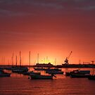 Sunrise at williamstown  by karljzeller