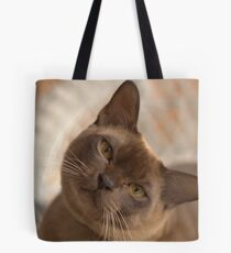 Dreamy Burmese Tote Bag