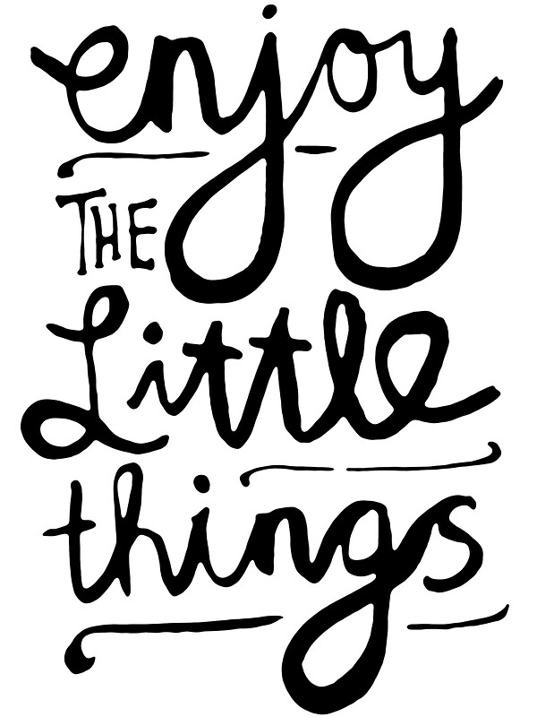 enjoy the little things stickers by theloveshop redbubble