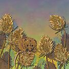 Harvest Mouse and Teasels by lottibrown