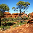 Red Centre by Jackal