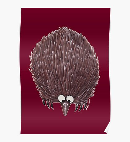 Echidna Maroon Poster