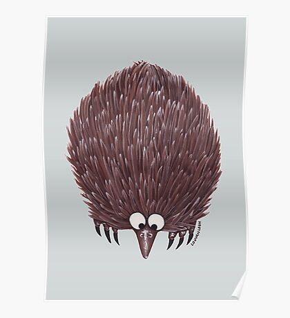 Echidna Pale Blue Poster