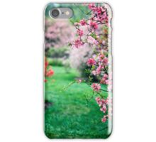 Azalea Bushes iPhone Case/Skin
