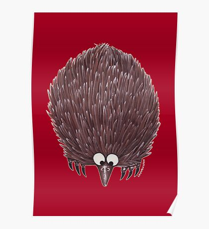 Echidna Red Poster