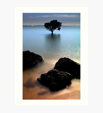 Night at Tenby Point Art Print