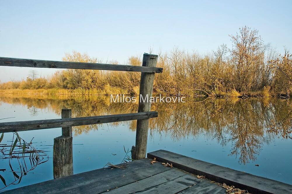 Dock by Milos Markovic