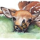 Deer Fawn by Meaghan Roberts