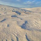 White Sands Undercoating by Mitchell Tillison