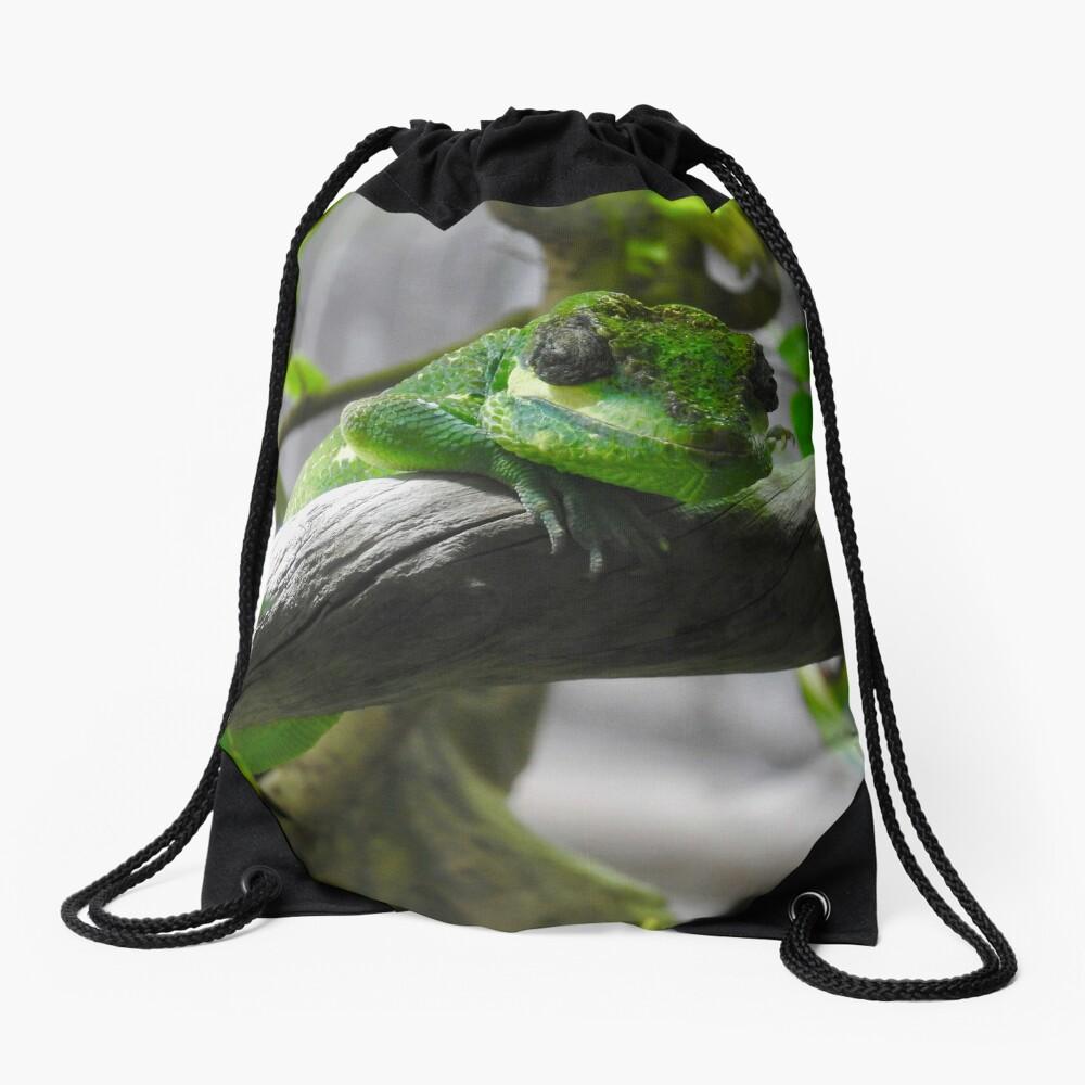 Knight Anole Lizard Drawstring Bag