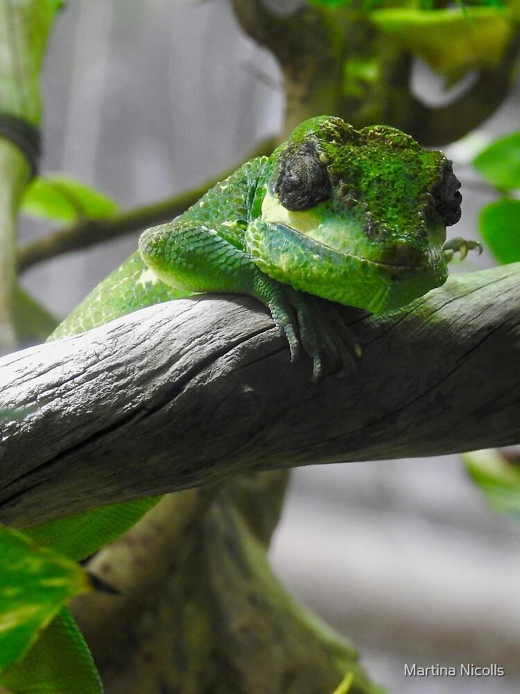Knight Anole Lizard by martina