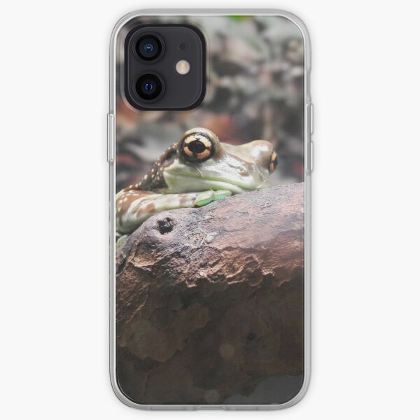 Amazon Milk Frog iPhone Soft Case