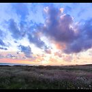 Gazo's Creek Sunset, CA by tomcelroy