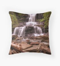 Tuscarora Falls Throw Pillow