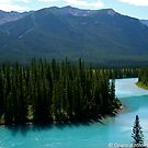 Canadian Rockies by GraceNotes