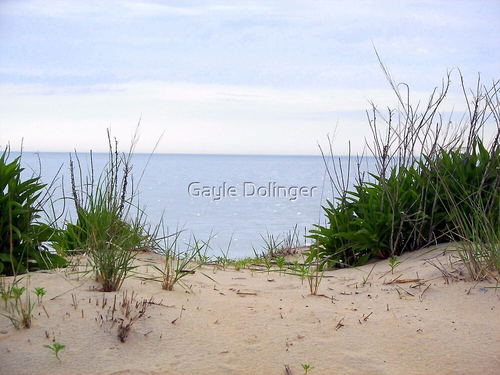 Just Over the Dune by Gayle Dolinger