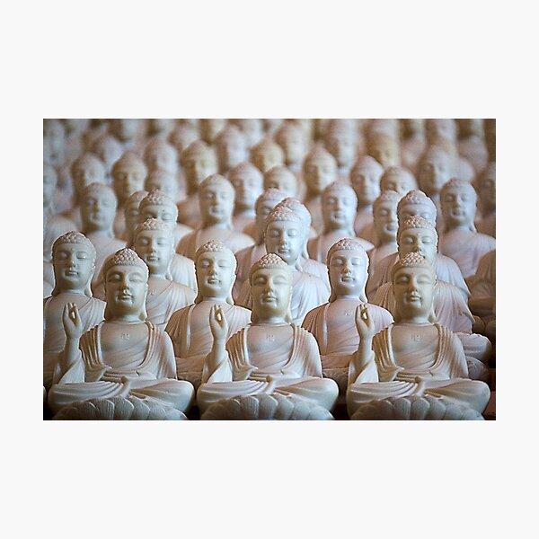 10,000 Buddhas Photographic Print