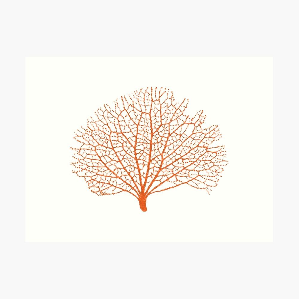 Koralle-Schattenbild des roten Seefächers Kunstdruck