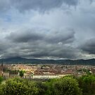 Panoramic Florence by Daniel Wills