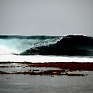 Get Slotted... (the surfing series) by Paul Manning