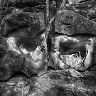 Janus Stones by Jeff Catford