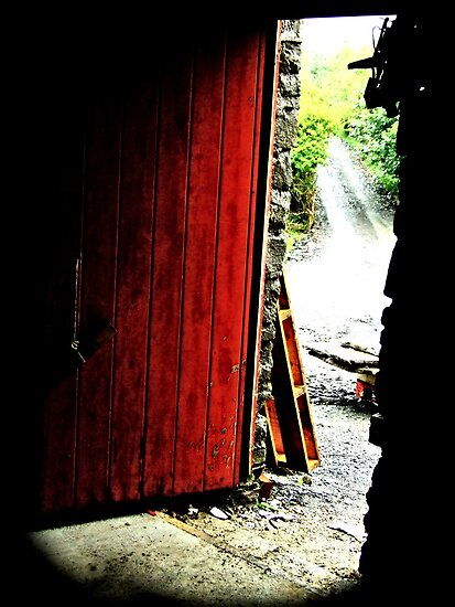 Red Door by rorycobbe