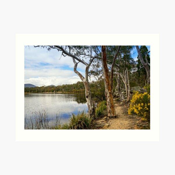 Dunns Swamp, Cudgegong River, Wollemi National Park Art Print