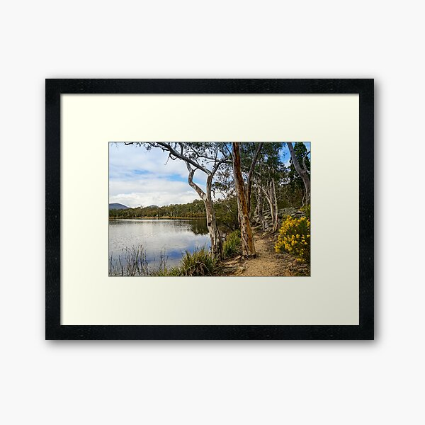 Dunns Swamp, Cudgegong River, Wollemi National Park Framed Art Print