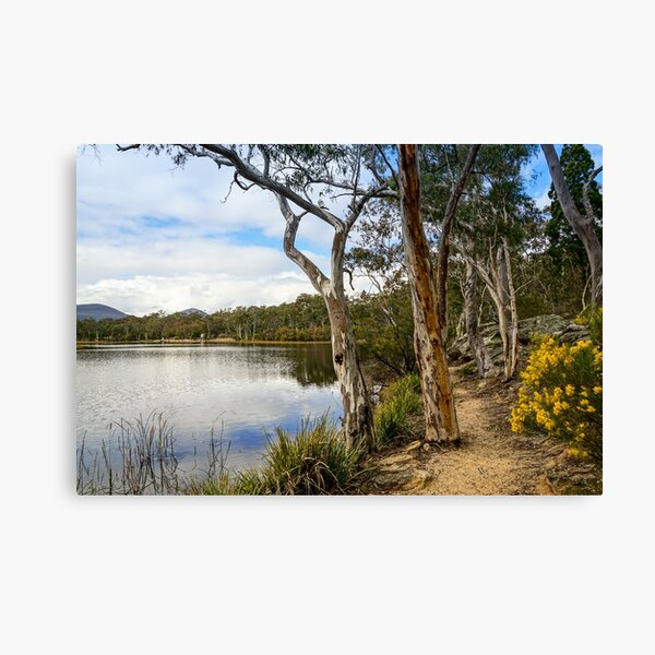 Dunns Swamp, Cudgegong River, Wollemi National Park Canvas Print