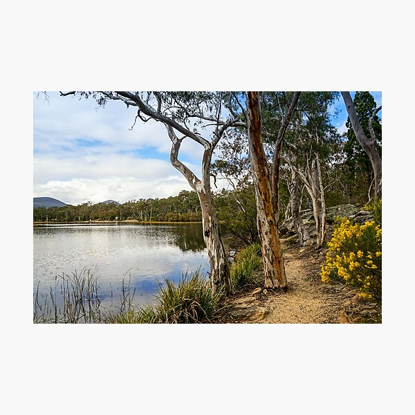 Dunns Swamp, Cudgegong River, Wollemi National Park Photographic Print