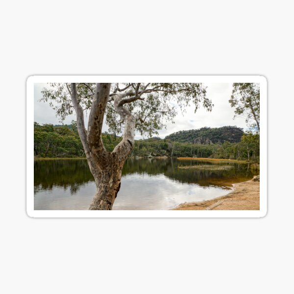 Dunns Swamp, Cudgegong River, Wollemi National Park, NSW Sticker