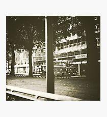 peeking... Photographic Print