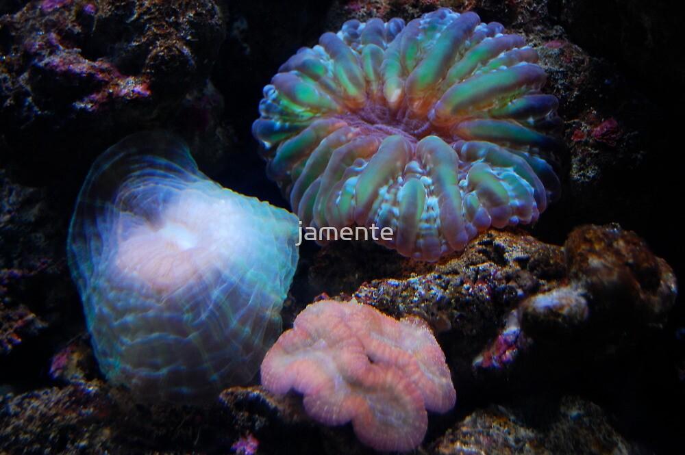 Sea Enemies by jamente