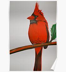 Cardinalis Cardinalis Poster