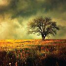 «Árbol» de baxiaart