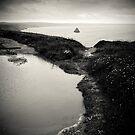 Tintagel Coast by Dorit Fuhg