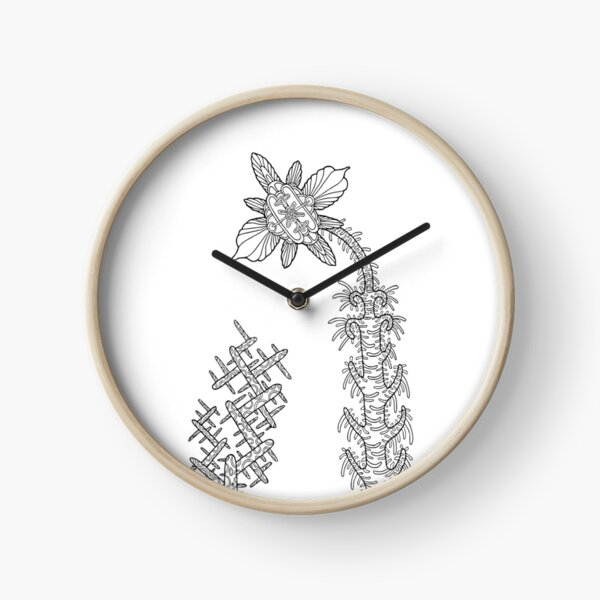Illustration 09ST22 Horloge