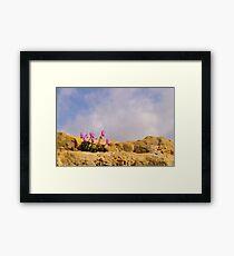 Cyprus Cyclamen Framed Print