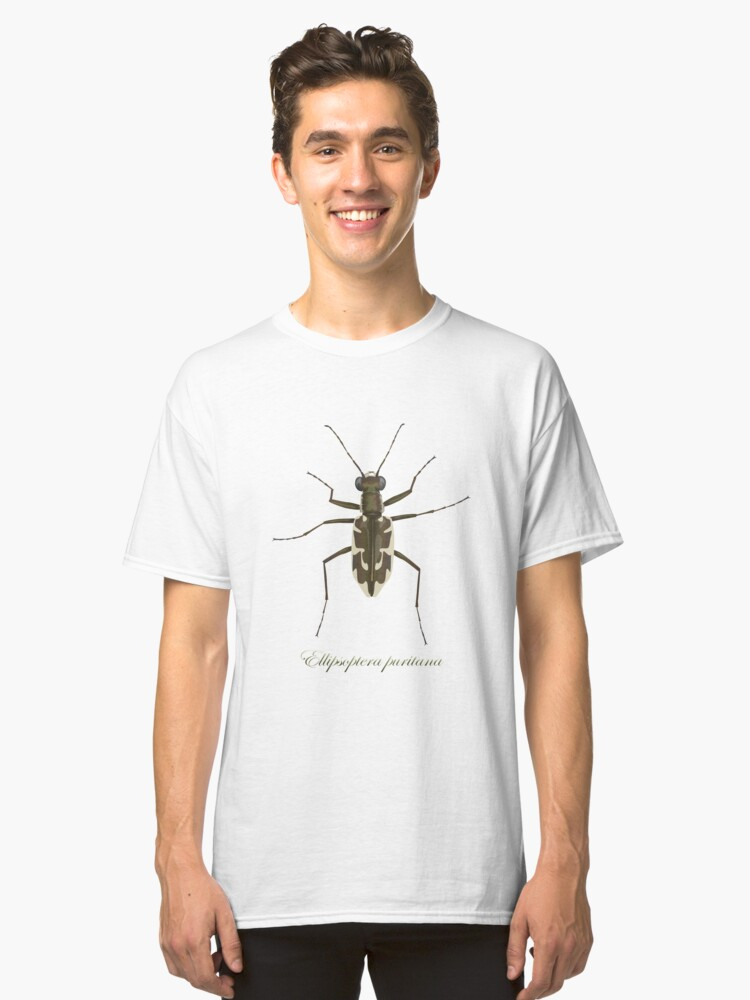 Alternate view of Puritan tiger beetle, Ellipsoptera puritana Classic T-Shirt