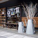 Shopfront in Takayama, japan. by johnrf