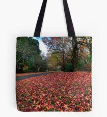 Mt Mount Wilson | NSW | The Blue Mountains | Australia | Autumn Wonderland Tote Bag