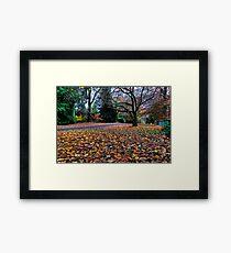 Autumn Mt Mount Wilson | NSW | The Blue Mountains | Australia Framed Print