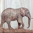 Elephant  by CowshedUK