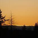 Pacfic Northwest Sunset by Kat Miller
