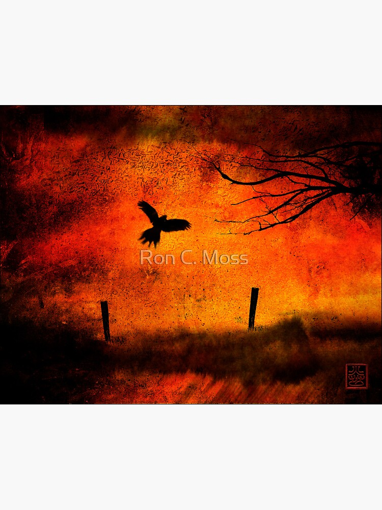 Wings Of Fire by ronmoss