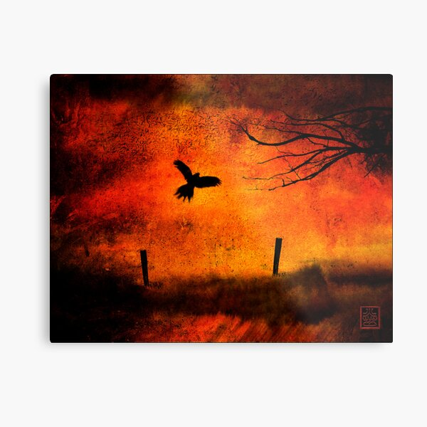 Wings Of Fire Metal Print
