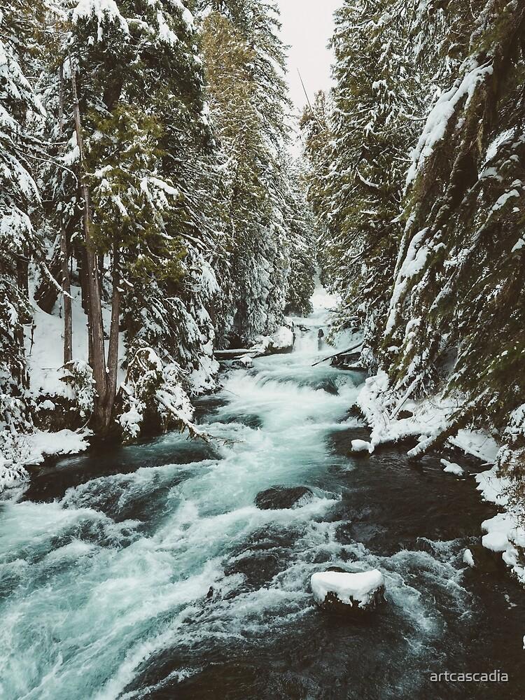 The Wild McKenzie River Adventure II - Pacific Northwest Nature Photography by artcascadia