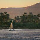 Sail away  by areyarey