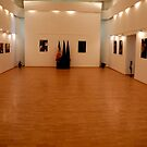 Exhibition Hall by Antanas